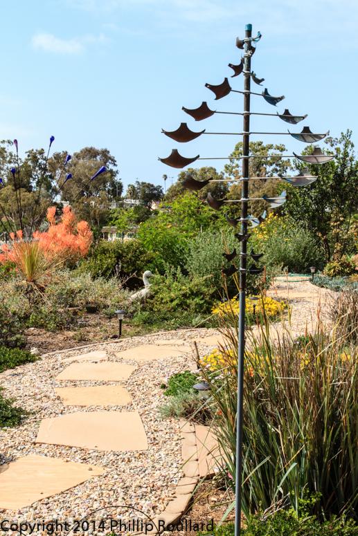 San Diego Native Plants Garden Native Tour 2016